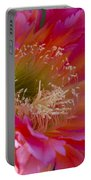 Hot Pink Cactus Flower Portable Battery Charger