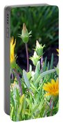 Ice Plant Portable Battery Charger