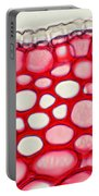 Ivy Stem Portable Battery Charger