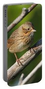 Lincolns Sparrow Portable Battery Charger