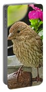 Little Girl Finch Portable Battery Charger