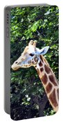 Long Neck Portable Battery Charger