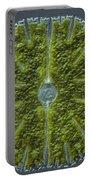 Micrasterias Sp. Algae Lm Portable Battery Charger