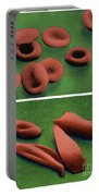 Normal And Sickle Red Blood Cells Portable Battery Charger