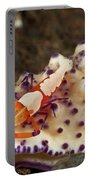 Nudibranch With Orange Emperor Shrimp Portable Battery Charger