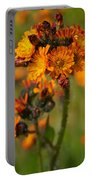 Orange Hawkweed Portable Battery Charger