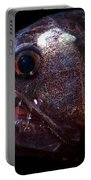 Pacific Viperfish Portable Battery Charger