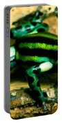 Pasco Poison Frog Portable Battery Charger
