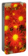 Patterned Petels Portable Battery Charger