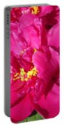 Peony Named Karl Rosenfield Portable Battery Charger