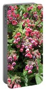Pulmonaria Named Raspberry Splash Portable Battery Charger