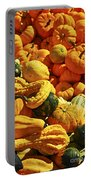 Pumpkins And Gourds Portable Battery Charger