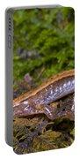 Seepage Salamander Portable Battery Charger