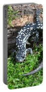 Slimy Salamander Portable Battery Charger