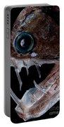 Sloanes Viperfish Portable Battery Charger