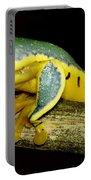 Splendid Leaf Frog Portable Battery Charger