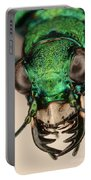 Tiger Beetle Portable Battery Charger