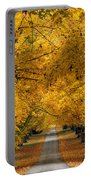 Trees In Autumn Portable Battery Charger