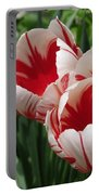 Triumph Tulip Named Carnaval De Rio Portable Battery Charger