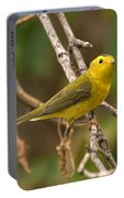 Wilson's Warbler Portable Battery Charger