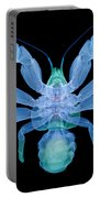 X-ray Of Coconut Crab Portable Battery Charger