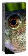 Yellow Perch Perca Flavescens Portable Battery Charger