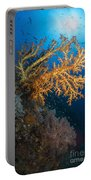 Yellow Sea Fan In Raja Ampat, Indonesia Portable Battery Charger