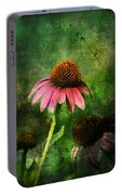 3 Amigos Echinacea Coneflower Grunge Art Portable Battery Charger