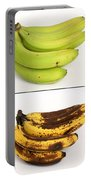 Banana Ripening Sequence Portable Battery Charger
