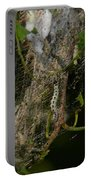 Bird-cherry Ermine Caterpillars Portable Battery Charger