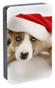Border Collie Puppy Portable Battery Charger
