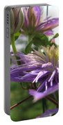 Double Clematis Named Crystal Fountain Portable Battery Charger