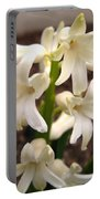 Hyacinth Named Aiolos Portable Battery Charger