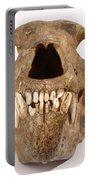 Kodiak Bear Skull Portable Battery Charger