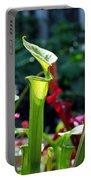 Sarracenia Flava Portable Battery Charger