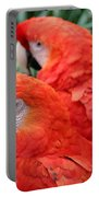 Scarlet Macaw  Portable Battery Charger