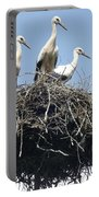 3 Storks In The Nest. Lithuania Portable Battery Charger