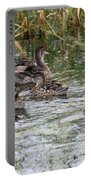 Teal Ducks Portable Battery Charger