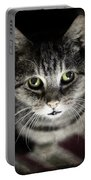 Wonky Eyed Tiger Portable Battery Charger