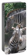 Zebras Portable Battery Charger