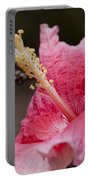 Art By Nature Portable Battery Charger