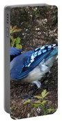 Blue-jay Portable Battery Charger