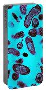 Coxiella Burnetii Bacteria, Tem Portable Battery Charger