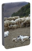 Flock Of Sheep Portable Battery Charger