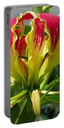 Gloriosa Named Rothschildiana Portable Battery Charger