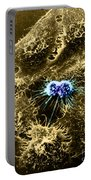 Hela Cells With Adenovirus Portable Battery Charger
