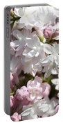 Lilac Named Beauty Of Moscow Portable Battery Charger