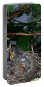 Robin Nestlings Portable Battery Charger