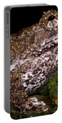 Rusty Robber Frog Portable Battery Charger