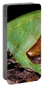 Darwins Frog Portable Battery Charger